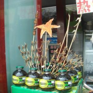 20130505_Beijing_Beihai_Houhei_kandierte_Skorpione