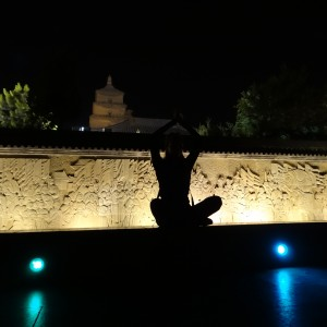 20130512_Xian_Couchsurfing_neue_Kamera_Netbook_Big_Goose_Pagoda_035