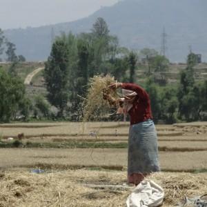 20130525_Nagarkot_Bhaktapur_Kathmandu_Changu_Narayan_021