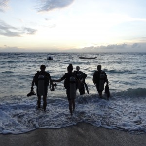 20130619_Koh_Tao_Sairee_Beach_Nightdive_025