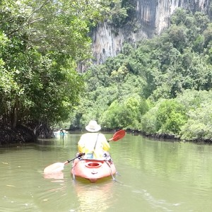 20130629_Krabi_Mangroven_Kayaking_Elephant_Ride_029