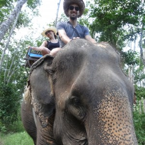 20130629_Krabi_Mangroven_Kayaking_Elephant_Ride_040