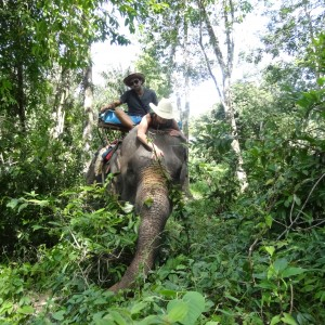 20130629_Krabi_Mangroven_Kayaking_Elephant_Ride_054