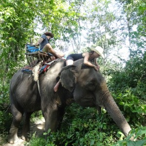 20130629_Krabi_Mangroven_Kayaking_Elephant_Ride_056