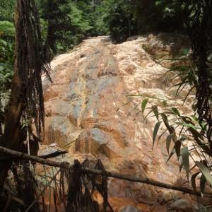 20130709_10_Malaysia_Cameron_Highlands_017