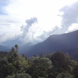 20130709_10_Malaysia_Cameron_Highlands_047