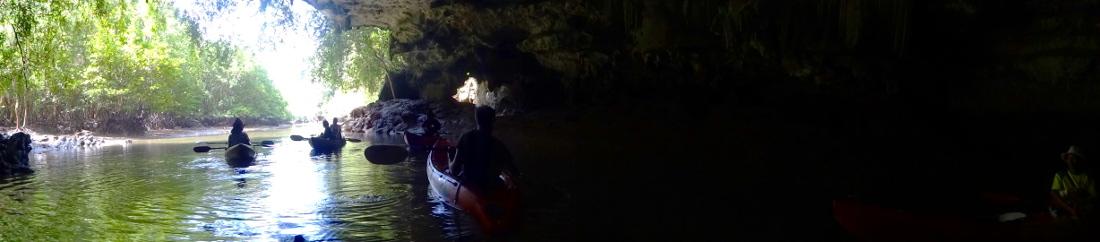 Krabi: Mangroven Kayaking