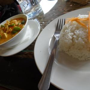 Yellow Curry mit Reis