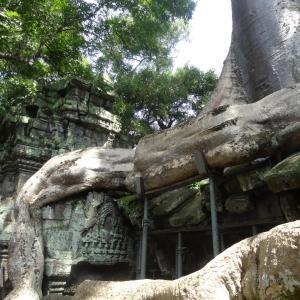 20130825_Angkor_Wat_027