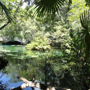 20131022_Cenotes_Azul_002