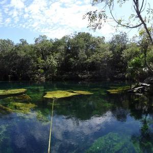 20131023_Cenotes_Jardin_Eden_047