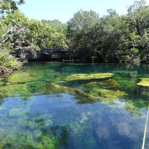 20131023_Cenotes_Jardin_Eden_048