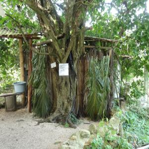 20131025_Bacalar_Magic_Hostel_014