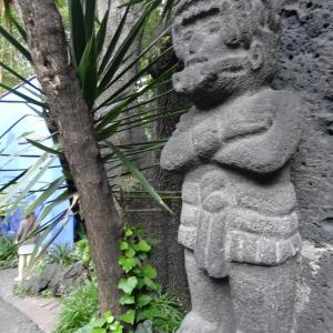 Jardin_de_Casa_Azul_Frida_Kahlo_010