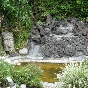 Jardin_de_Casa_Azul_Frida_Kahlo_016