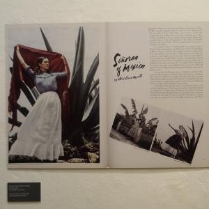 Vida_de_Frida_Kahlo_008