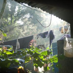 20131209_Ciudad_Perdida_Cabana_Honduras_a_Mumake_001