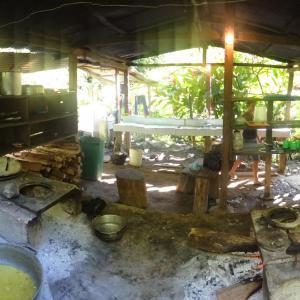 20131209_Ciudad_Perdida_Cabana_Honduras_a_Mumake_007