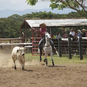 20131221_Vacaria_Vaceros_153
