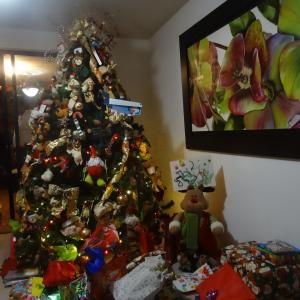 20131224_Navidad_en_Cali_030