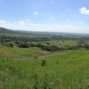20131225_Valle_de_Cauca_003