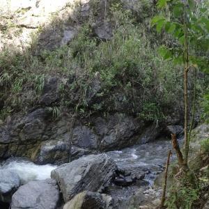 20131225_Valle_de_Cauca_010