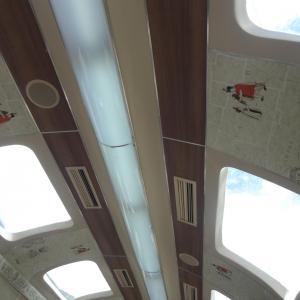 20140108_Ollantaytambo_to_Aguas_Calientes_Peru_Rail_005