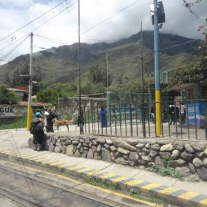 20140108_Ollantaytambo_to_Aguas_Calientes_Peru_Rail_006