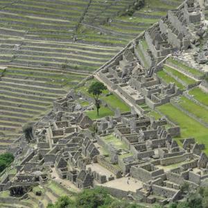 20140109_Machu_Picchu_222