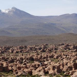 20140119_Chiguana_Volcano_Ollague_009