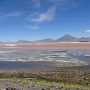 20140119_Parque_Eduardo_Laguna_Colorada_Avaroa_Flamingos_004