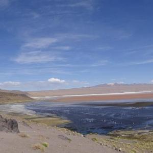 20140119_Parque_Eduardo_Laguna_Colorada_Avaroa_Flamingos_008